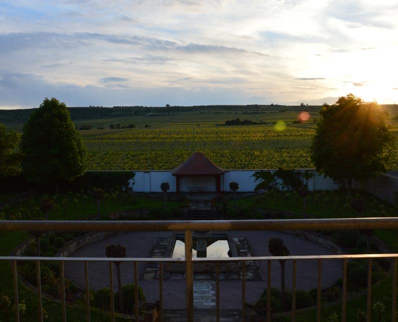 Mainz&-Reportage: Das Gefühl des Herrn Raumland für Champagner