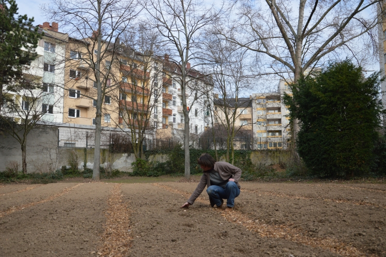 So fing alles an - Urband Gardening im April 2013 - Foto gik